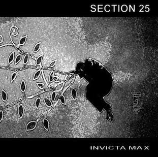 Section 25 - Invicta Max 10-inch EP