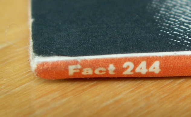 Fact 244 Vini Reilly; alternate abandoned 8vo artwork - spine detail [1]