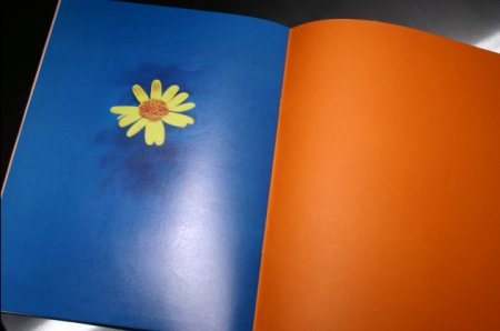 FAC 229! The Music Week Factorial; inside back cover detail